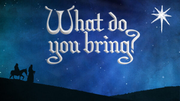 What do You Bring?